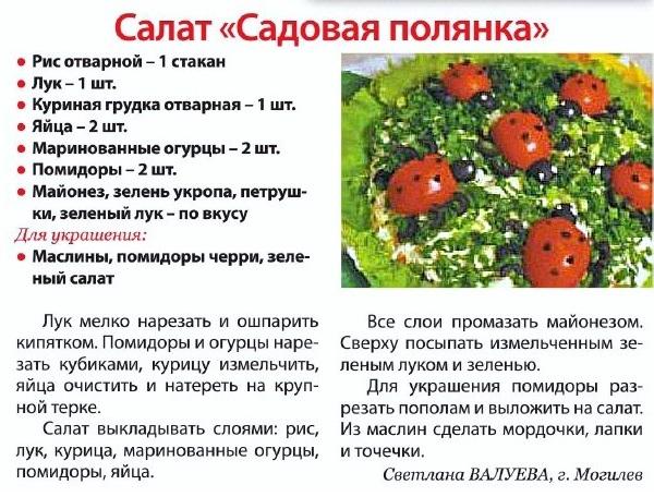 Фото салатов с описанием