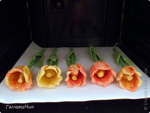 Тюльпаны из соленого теста своими руками пошаговая инструкция 45