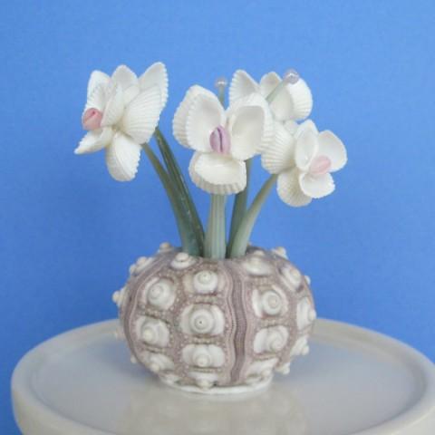 Поделки цветы из ракушек