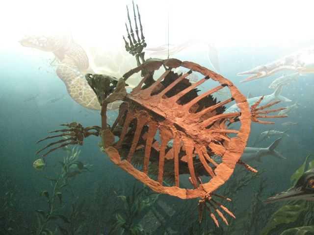 prehistoric20 Невероятные монстры прошлого, обитавшие на Земле