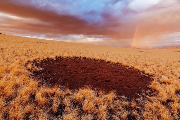 http://thumb.positime.ru/r/800x-/2013/03/scientists-have-uncovered-the-secret-of-the-magic-circle-of-namibia.jpg