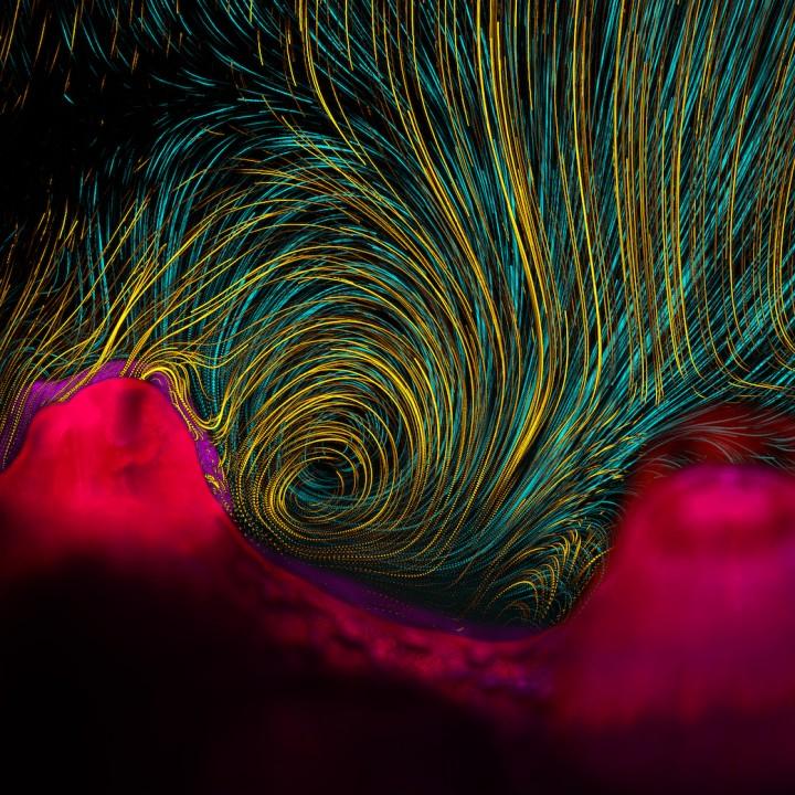 7 самых умопомрачительных научных визуализаций 2013-го года
