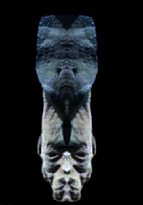 Голлова марсианина, восстановленная посредством зеркального отображения сохранившийся половинки