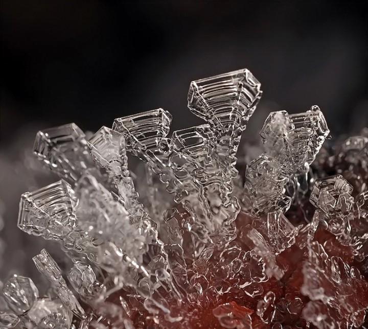 snejinkimakro 12 Снежинки. Фотограф Андрей Осокин
