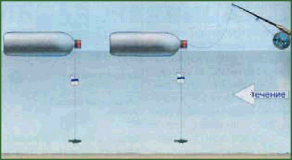 Рис.11. «Кружки» из пластиковых бутылок, оснащенные жерлицами.