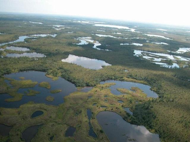 Термокарстовые озёра на полуострове Ямал (Россия)