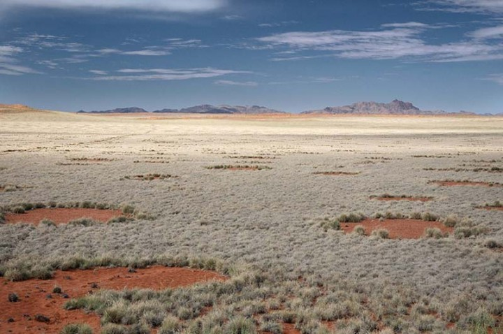 mysterious fairy circles of namibia 9 Таинственные круги Намибии