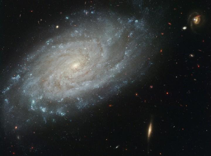 Спиральная галактика NGC 3370