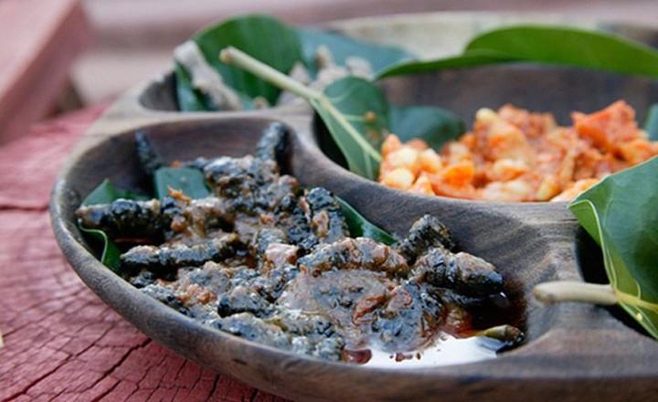 edible05 Фотогид по съедобным насекомым
