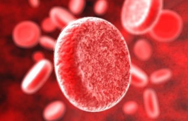 особенности крови