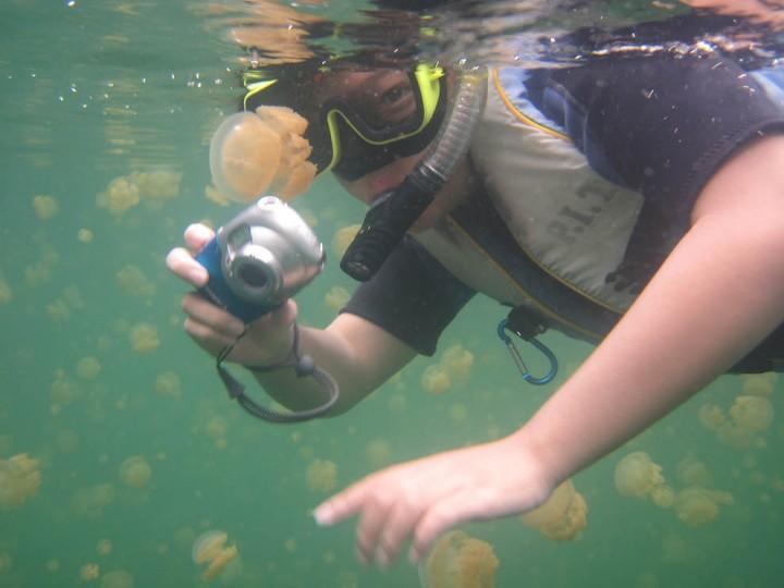 1380 Озеро медуз