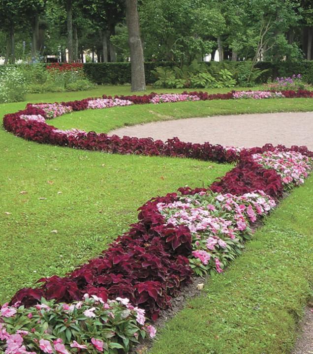 вариант фото садовых дорожек и цветочных клумб эпоху фараонов
